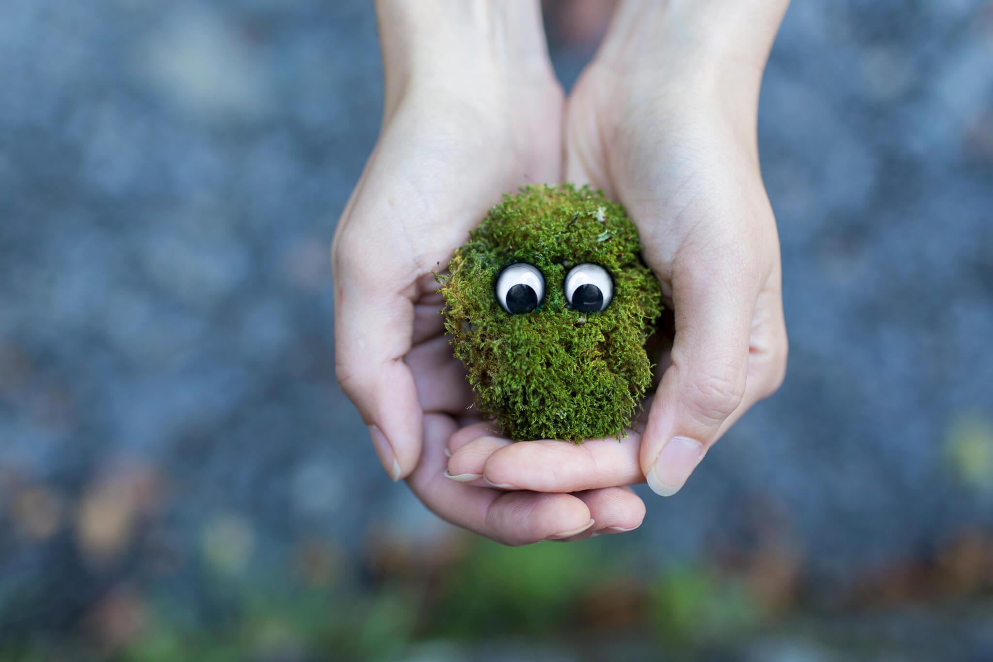 grünes filzbällchen festhalten vertrauen